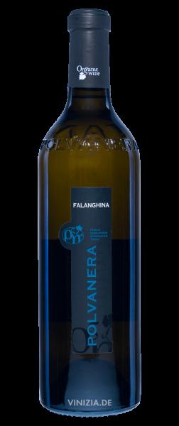 Falanghina-Puglia-IGT-2020-Polvanera-Cantina-Polvanera-1.png