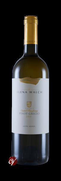 Pinot-Grigio-Castel-Ringberg-Alto-Adige-DOC-2019-Elena-Walch