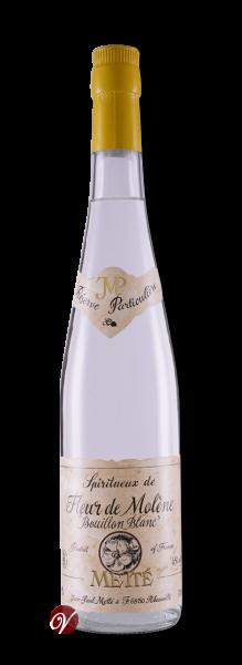 Fleur-de-Molene-Bouillon-Blanc-Mette-Jean-Paul-1.png