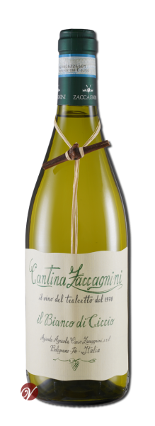 Il-Bianco-di-Ciccio-Tralcetto-Colli-PescIGT-2019-Zaccagnini-