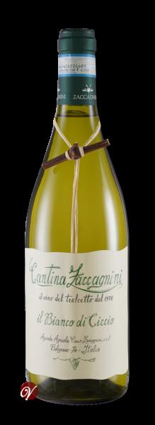 Il-Bianco-di-Ciccio-Tralcetto-Colli-PescIGT-2018-Zaccagnini